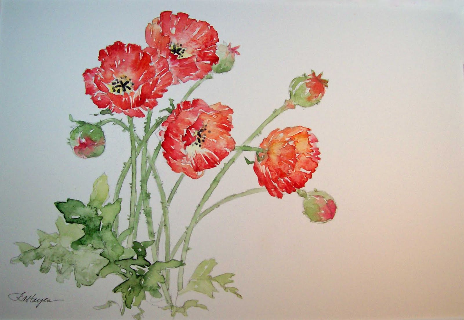 Watercolor Paintings by RoseAnn Hayes: Red Poppies