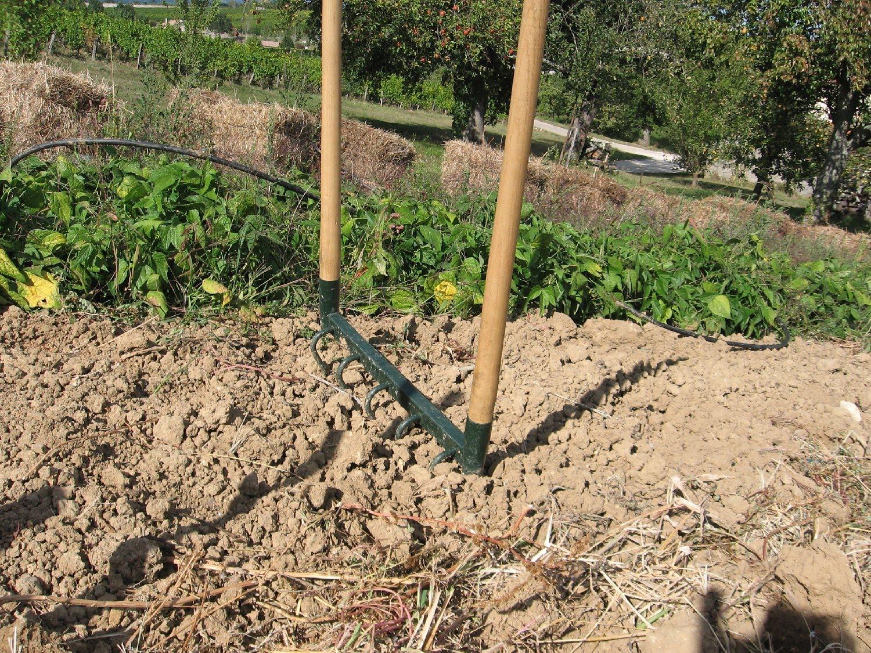 Quoi Planter Dans Une Terre Argileuse drôle de terre pour un potager: septembre 2010