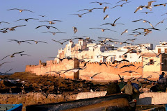Passions Voyages Essaouira
