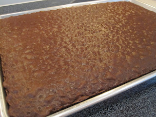 HOHO Cake is a simple chocolate cake box mix with two different homemade frostings to layer on top. Life-in-the-Lofthouse.com