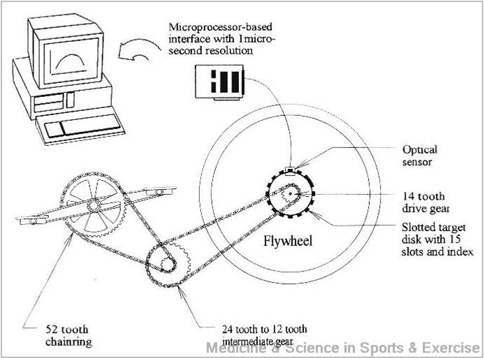 force velocity relationship and maximum power on a cycle ergometer