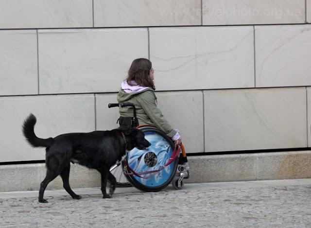 Эта девочка не может ходить, но темне менее выгуливает свою собаку.