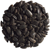 Black Seed Oil Can I Take It With Food