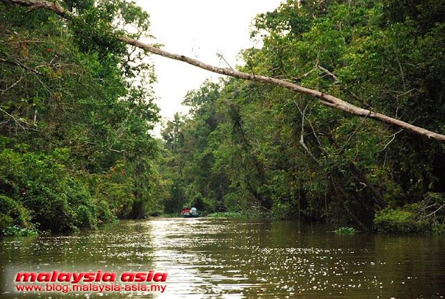 Photo of Kinabatangan River