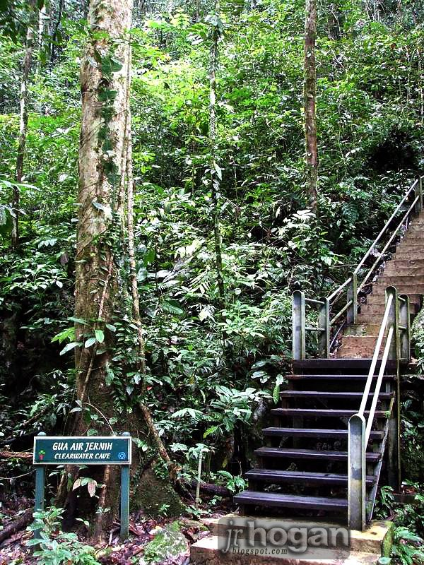 Stairs up to Clearwater Caves Mulu