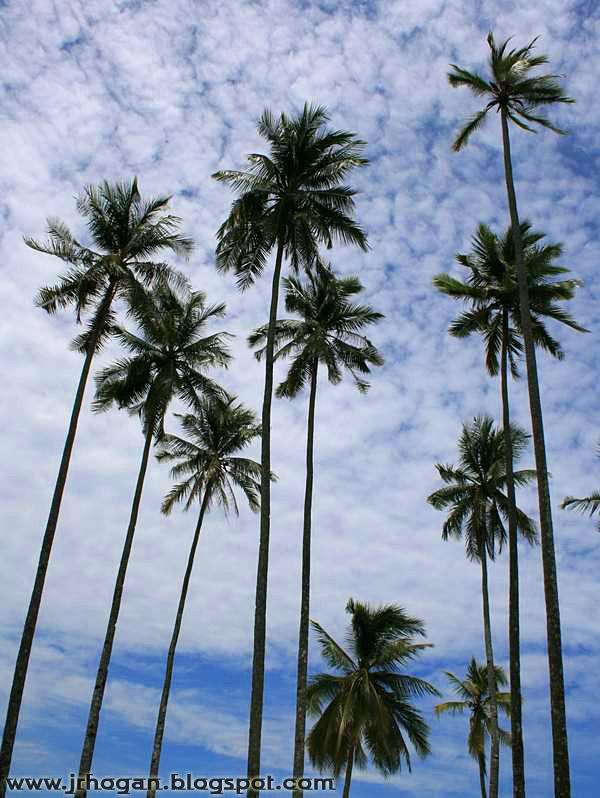 Redang Berjaya Resort