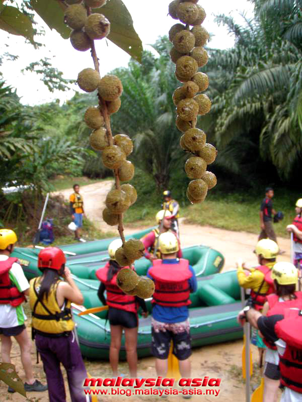 Photo of Slim River White Water Rafting