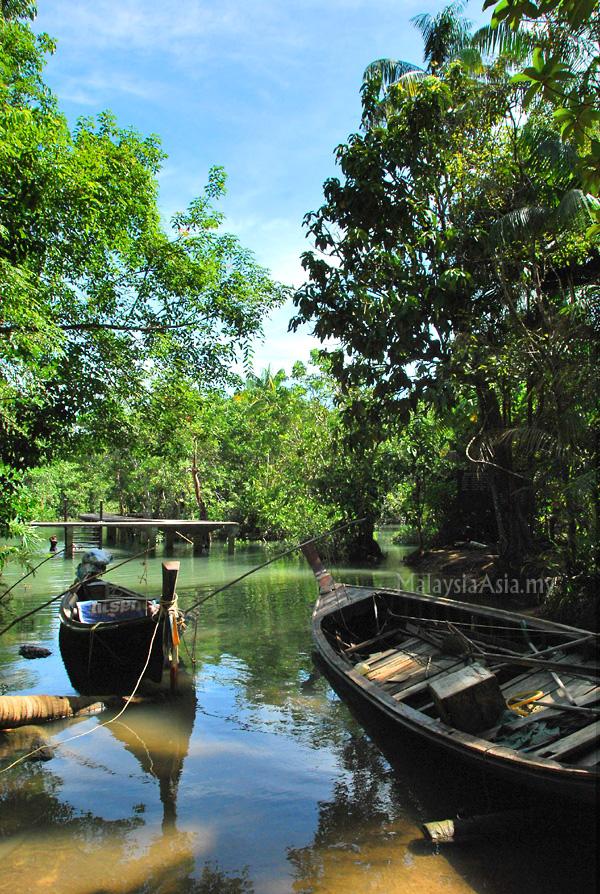 Krabi Nature Trail