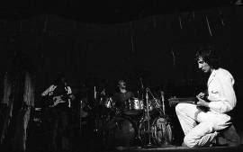 rtistas Essenciais Woodstock