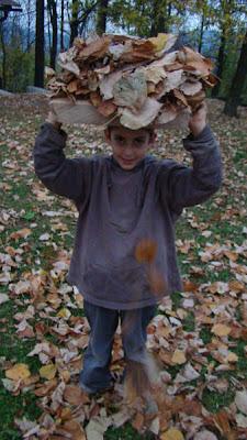 listje pada