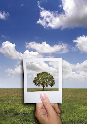 Movimentos Ecológicos Mundiais