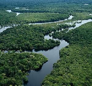 Conservação da Natureza   Recursos Naturais e Conservacionismo