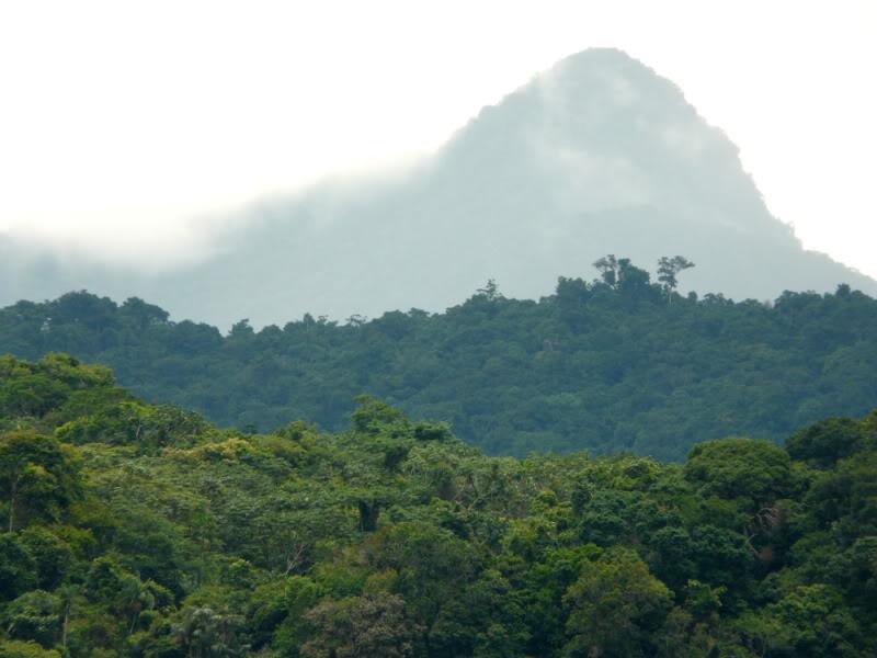 Parque Nacional do Pico da Neblina | Amazonas