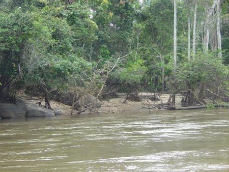 Rio Urupá