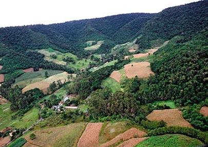 Corredores Ecológicos ou Corredores de Biodiversidade