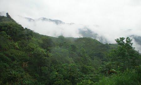 Parque Estadual da Serra das Araras | Minas Gerais