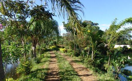 Fazenda | Santa Rita do Passa Quatro