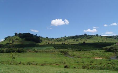 Área de Relevante Interesse Ecológico Buriti de Vassununga