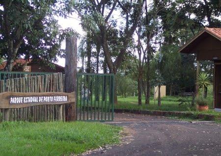 Parque Estadual de Porto Ferreira | São Paulo
