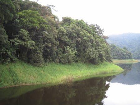 Parque Estadual Turístico da Cantareira (PETAR) - SP