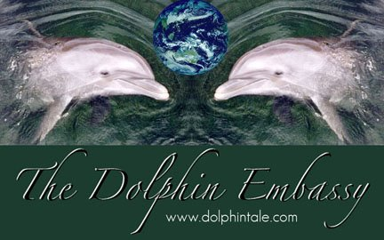 The Dolphin Embassy Times