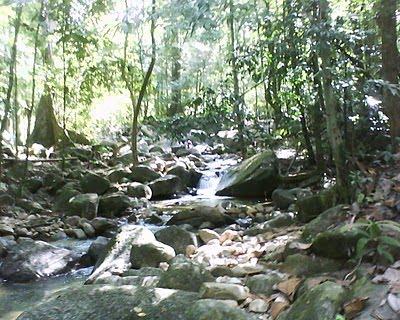 Pelancongan Terengganu Hutan Lipur Air Menderu