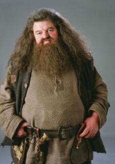 Feliz Aniversário, Rúbeo Hagrid! | Ordem da Fênix Brasileira