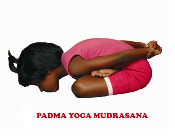 sri veeramaruthi yoga center padma yoga mudrasana