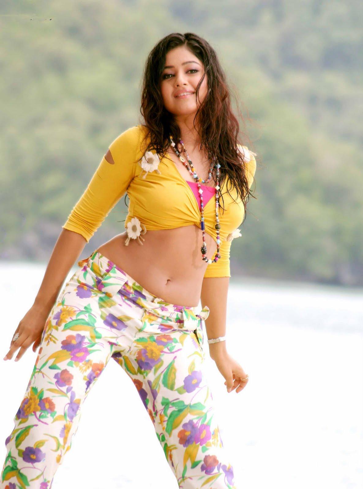 Film Actress Photos: Poonam Bajwa Hot Navel Show