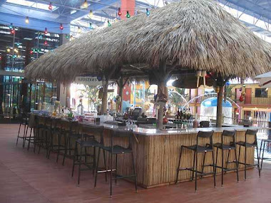 my favorite tiki hut pics
