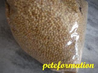 Millet In Cat Food