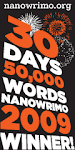 NaNoWriMo in November