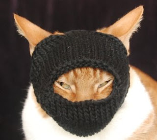 Spindles And Spices International Cat Hat Japan