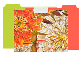 file folders, one with flowers and two with coordinated solid colors