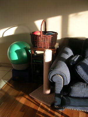 end of sofa; cat scratching post; end table bookshelf with basket on top; blue step with basket on top holding large exercise ball