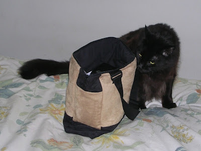 purse with large black cat, probably part Maine Coon