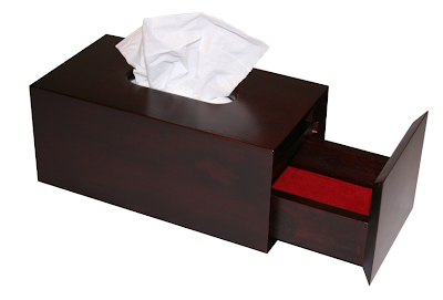 tissue box with hidden storage for adult toys