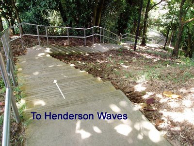 17_TrailToHendersonWaves_DownPath