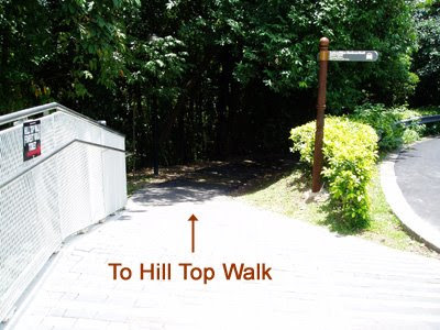 29_TrailToHillTopWalk