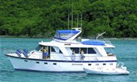 Dive the Virgin Islands with SHINING STAR - Paradise Connections Yacht Charters