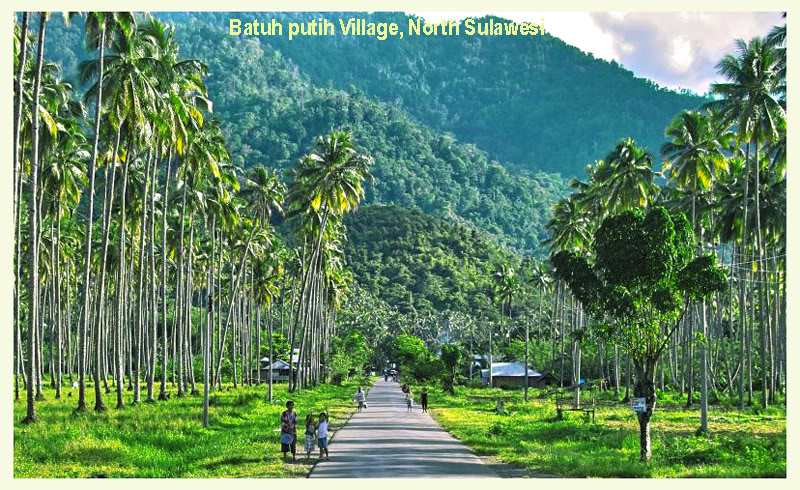Gambar Kota Manado di Sulawesi Utara - Ardi La Madi's Blog