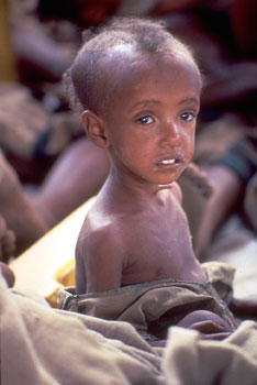 Gambar kehidupan di afrika  Ardi La Madis Blog
