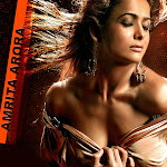 Amrita Arora Hot Pictures Collection