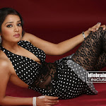 Nikitha  south Indian Cute Babe