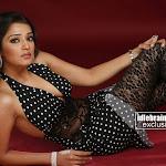 Nikitha  south Indian Cute Babe