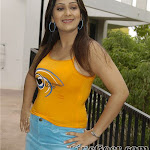 Ankitha Spicy South Actress