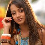 Trisha Kuruvi Movie Snaps