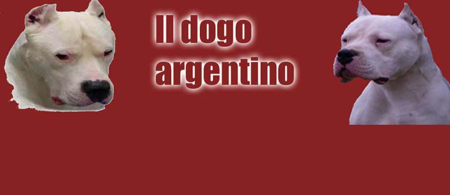 il dogo argentino: alimentazione