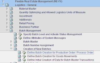 SAP MM Expert: Batch Management