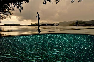 national geographic moments 28